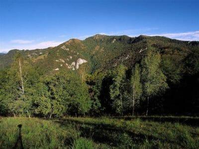 Da Villa d'Almè a Monte di Nese